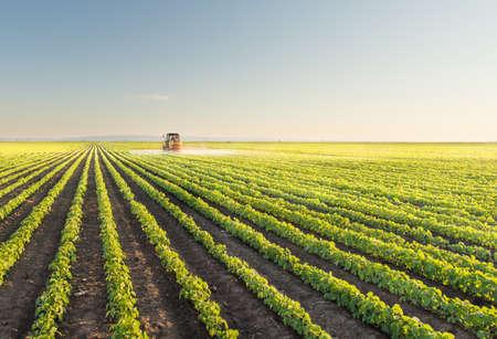 maquinaria: Tractor fumigación campo de soja en la primavera Foto de archivo