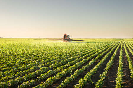 agriculture machinery: Tractor spraying pesticides on soybean