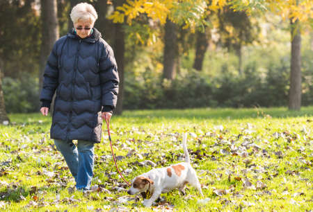 european ethnicity: Old woman with a dog in autumn park