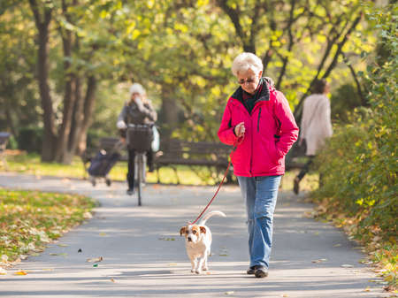eastern european ethnicity: Old woman with a dog in autumn park