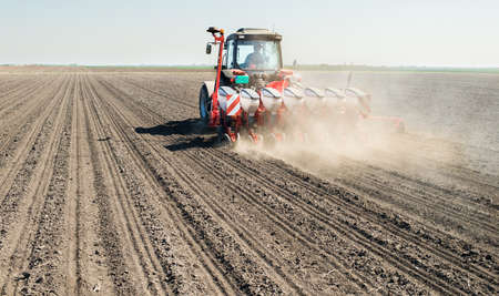 siembra: La siembra de soja en la primavera