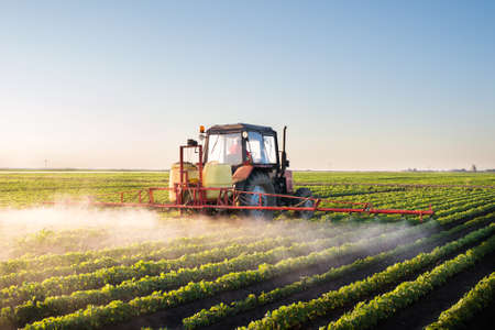 Tractor spraying soybean field at spring Stockfoto
