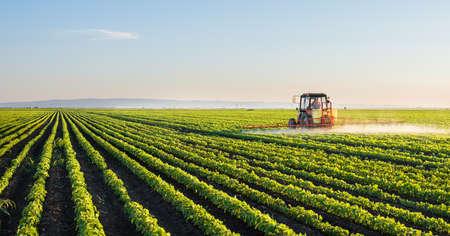 �sunset: Tractor fumigaci�n campo de soja en la primavera Foto de archivo