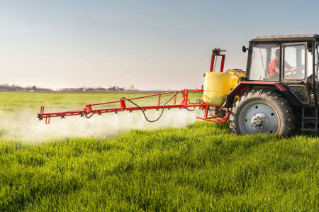 pulverizador: Tractor fumigación de campo de trigo con el rociador Foto de archivo