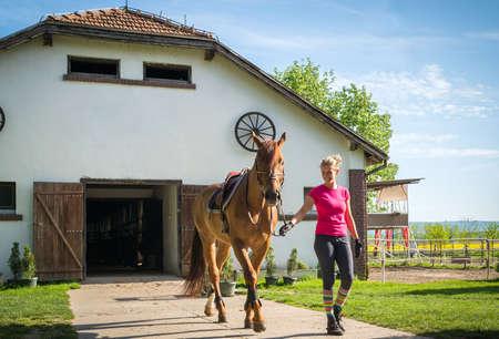 chica con el caballo en el establo Foto de archivo
