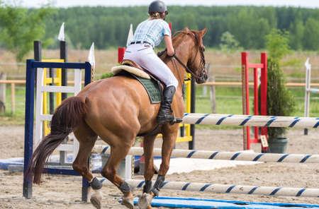 cavallo che salta: Sport Equestri, Ippico, Salto ostacoli, equitazione Archivio Fotografico