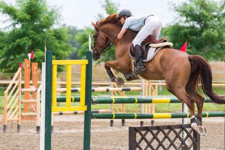 Sport Equestri, Ippico, Salto ostacoli, equitazione