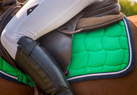 stirrup: Dressage horse and rider girl Stock Photo