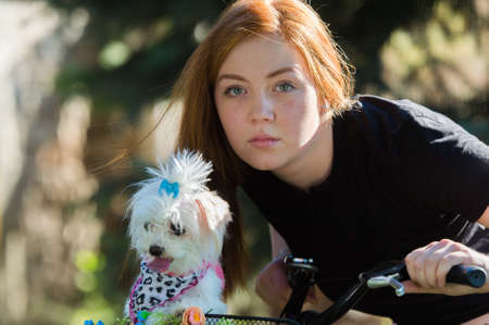 Young pretty girl with bicycle and Maltese dog Stock Photo