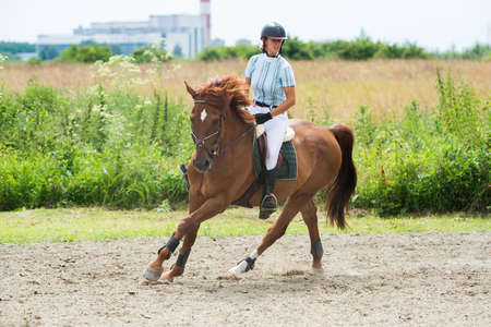 Equestrian Sports, Horse jumping, Show Jumping, Horse Riding Stock Photo