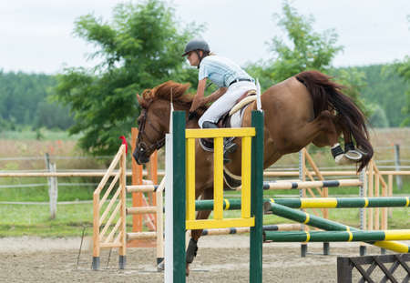 thorough: Equestrian Sports, Horse jumping, Show Jumping, Horse Riding Stock Photo
