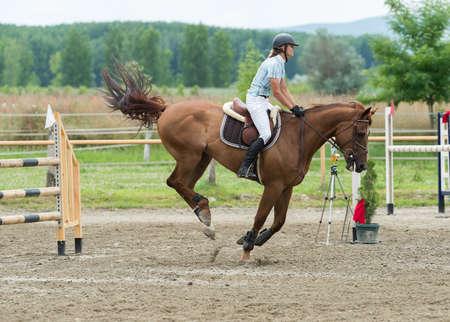 Sport Equestri, Ippico, Salto ostacoli, equitazione Archivio Fotografico