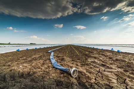 sequias: Muy tierra seca - la sequía - y la manguera para regar