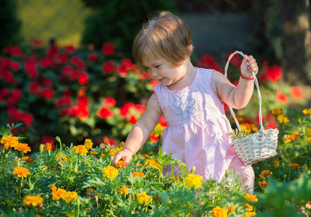 Beautiful baby girl picking flowers from the garden