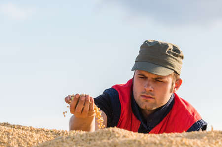cereals holding hands: young farmer and soy beans