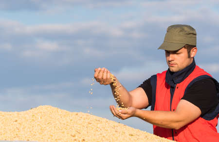 young farmer: young farmer and soy beans