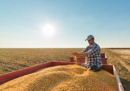 young farmer: Young farmer in corn fields
