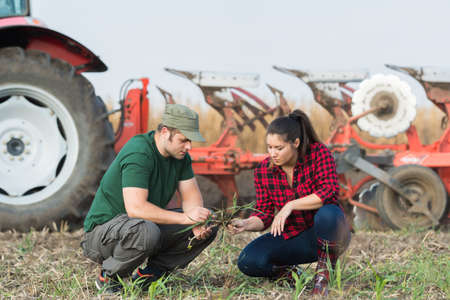 arando: Young farmers examing dirt while tractor is plowing field