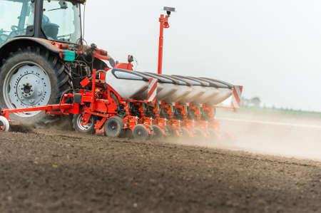 mazorca de maiz: Agricultor de sembrar los cultivos en campo