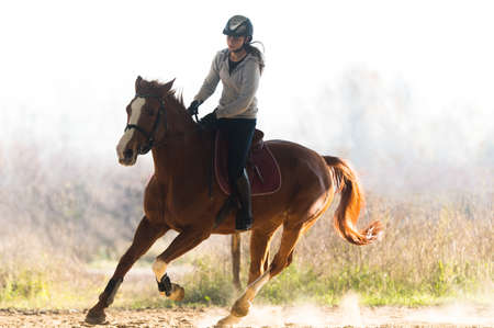 reins: Young pretty girl riding a horse
