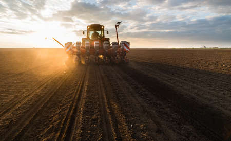 Farmer with tractor seeding - sowing crops at agricultural fields in spring
