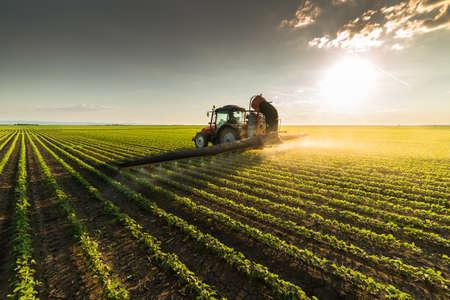 春の大豆畑に噴霧器で農薬を散布トラクター