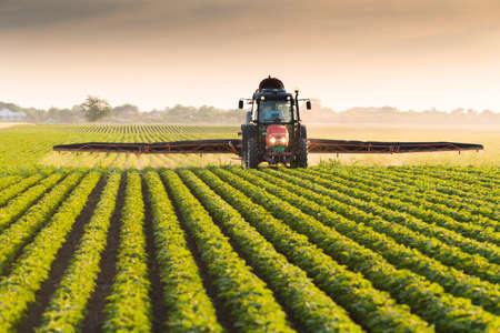 Tractor spraying pesticides on soybean field  with sprayer at spring Stok Fotoğraf - 79583942