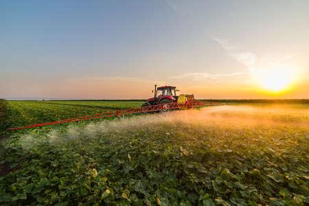 Tractor sproeien pesticiden op plantaardige veld met spuit in de lente