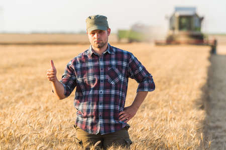 Young farmer in wheat field during harvest in summer Stock Photo