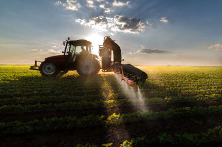 toxic substance: Tractor spraying pesticides on soybean field  with sprayer at spring