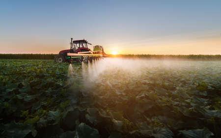 sorgo: Tractor pulverizando pesticidas en campo de soja con pulverizador