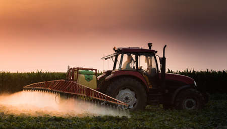 Tractor spraying pesticides on vegetable field with sprayer at spring Stock fotó