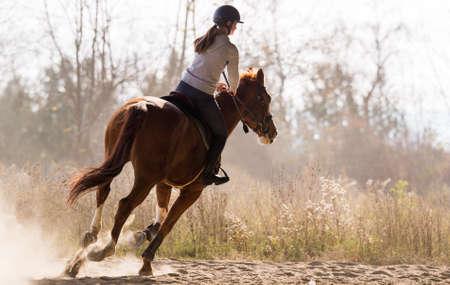 Niña bonita - montando un caballo con hojas retroiluminadas detrás