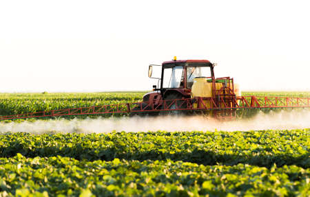 Farmer on a tractor with a sprayer makes fertilizer for young vegetables 版權商用圖片