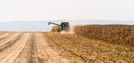 Ernte von Maisfeldern mit Mähdrescher