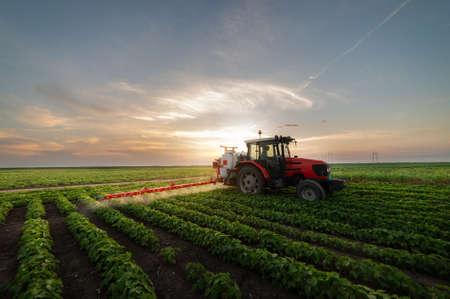 Trekker sproeien van pesticiden op soja veld met sproeier in het voorjaar Stockfoto