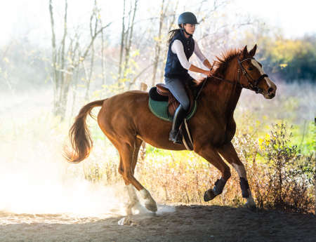 Young pretty girl - riding a horse with backlit leaves behind in autumn