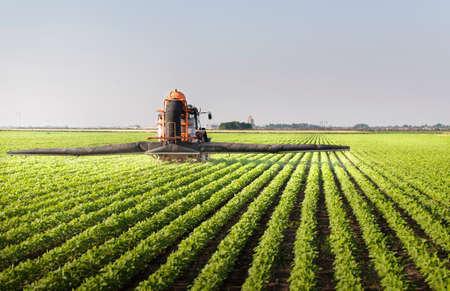 Tractor spraying pesticides on soy field with sprayer at spring Stockfoto