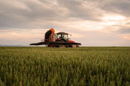 Tractor spraying pesticides over a green field Stock Photo