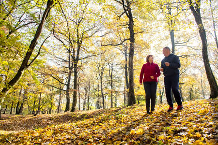Senior Couple doing sport outdoors, jogging on a forest  in the autumn