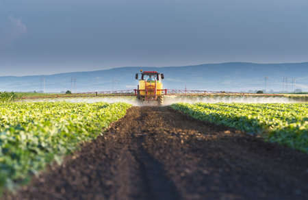 Tractor spraying pesticides on vegetable field  with sprayer at spring Stok Fotoğraf - 159604650