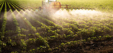Tractor spraying pesticides on soy field with sprayer at spring Standard-Bild