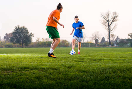 Two girls fighting to get the ball in a soccer game