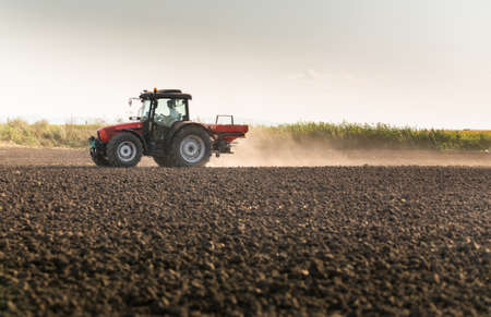 Tractor spreading artificial fertilizers. Transport, agricultural.
