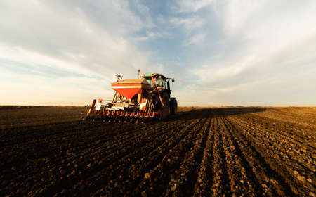 Farmer with tractor seeding - sowing crops at agricultural field. Plants, wheat. Stok Fotoğraf