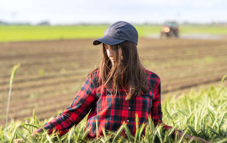 Young pretty farmer girl standing in  of green wheat field