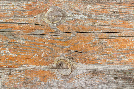 painted wood: Vintage painted and weathered wooden plank. Natural wood texture