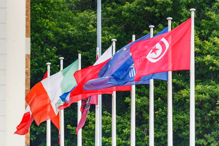 Waving flags of different countries on the flagpoles against green trees in sunny morning Stock fotó