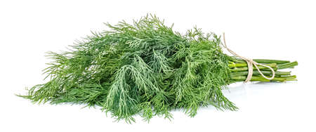 Lying bunch of dill tied with brown twine isolated on white background Standard-Bild