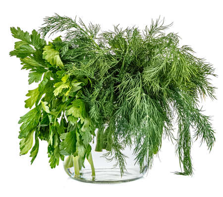 Bunches of dill and parsley in glass jar with water isolated on white background